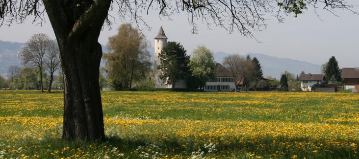 Von böhringer friedrich - Eigenes Werk, CC BY-SA 2.5, https://commons.wikimedia.org/w/index.php?curid=3962218